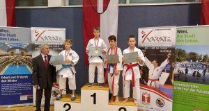 Ibrahim je osvojio zlatnu medalju na međunarodnom karate kupu  Wiena  open 2015